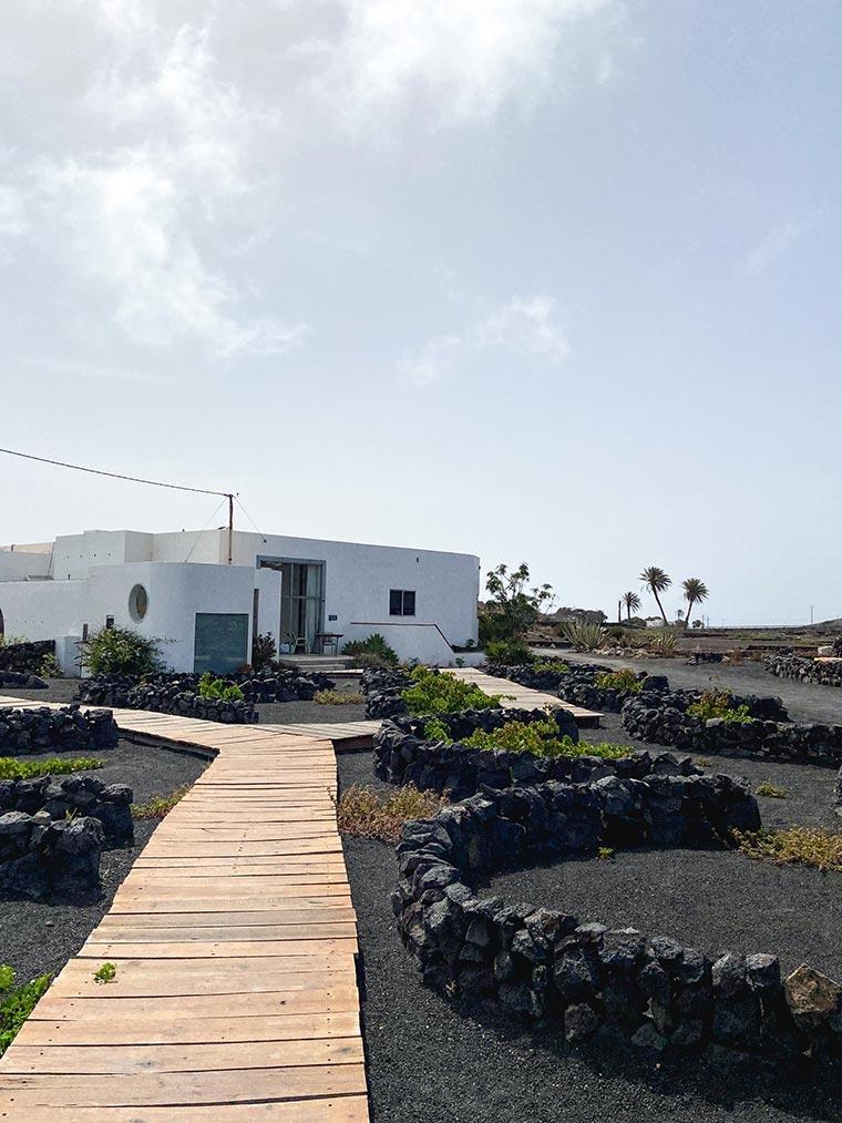 Buenavista Lanzarote Country